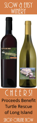 www.BenefitWines.com/turtle